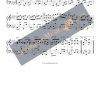 The Maple Leaf Rag by Scott Joplin as accordion arrangement - alternative key - page 3